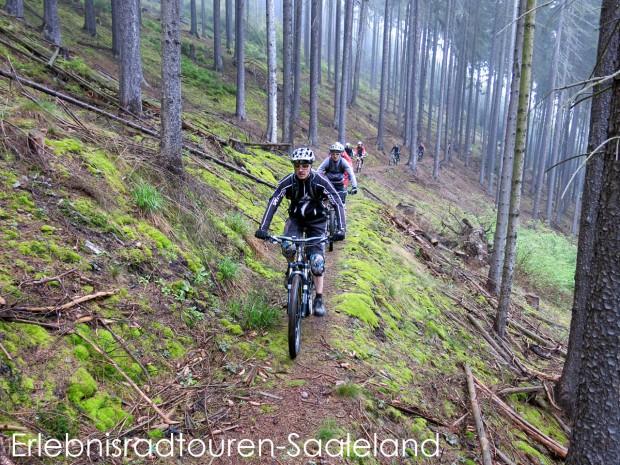 Mystisch - ein langer Biktrain zieht sich durch den nebligen Thüringer Fichtenwald.